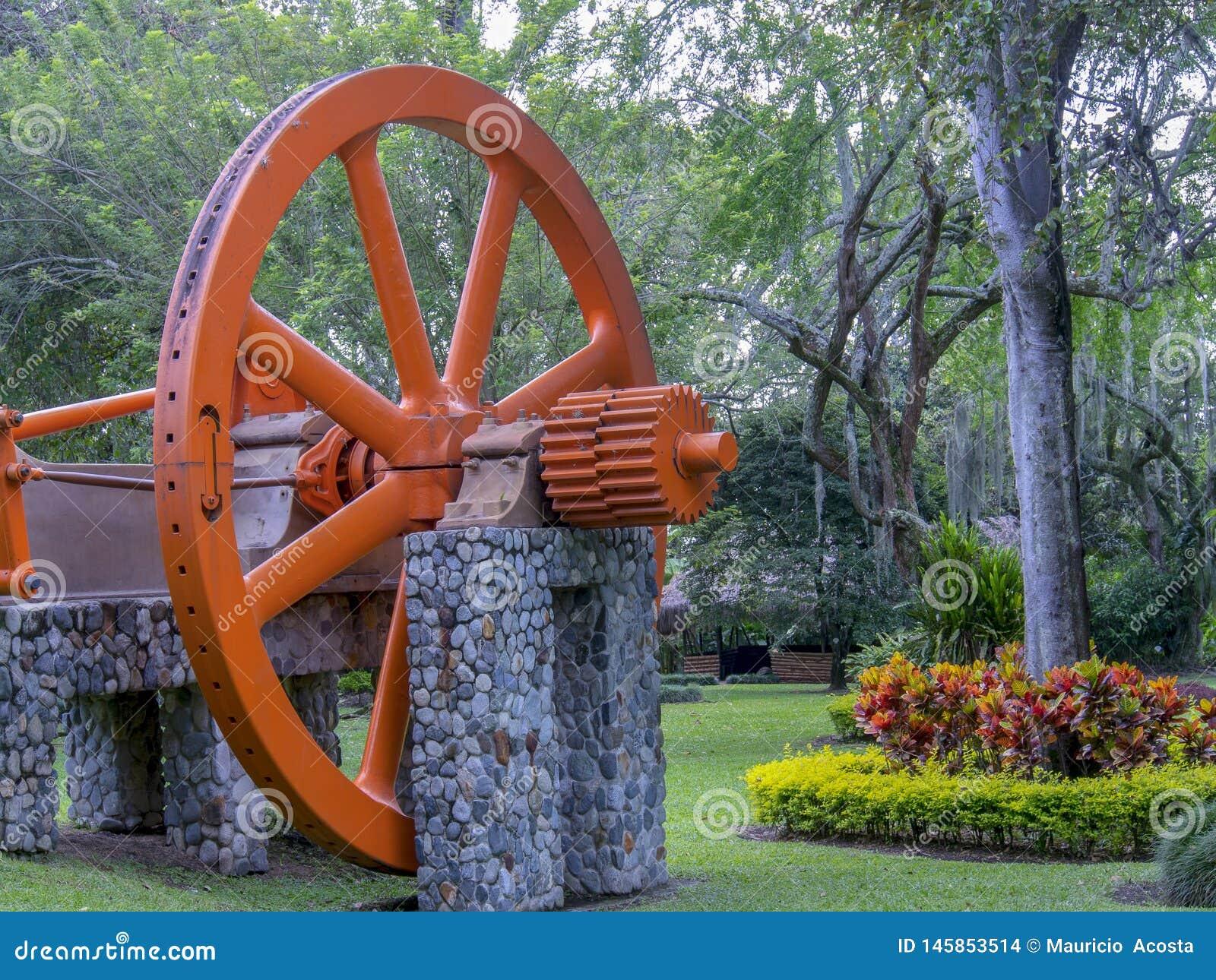 Den stora och gamla sockerrottingen maler hjulet