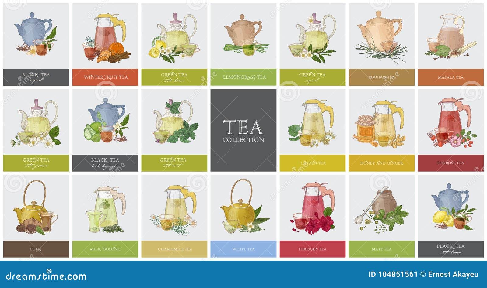 Den stora samlingen av etiketter eller etiketter med olika typer av te - svärta, göra grön, rooibos, masalaen, kompisen, puer Upp