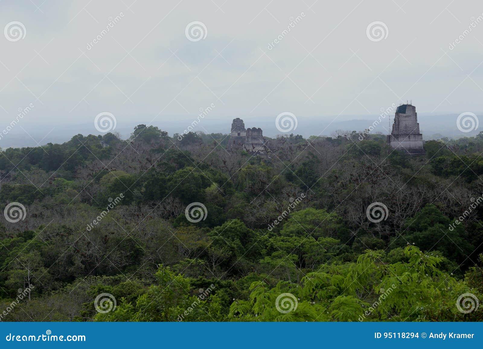 Den Tikal nationalparken nära Flores i Guatemala, jaguartempel är den berömda pyramiden i Tikal