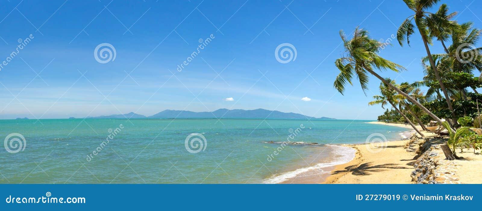 Den tropiska stranden gömma i handflatan