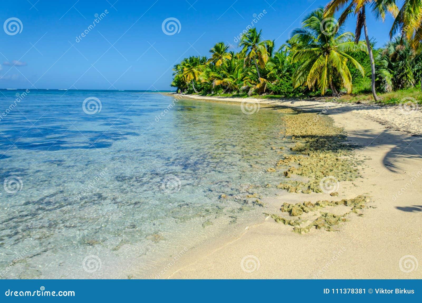 Den tropiska stranden med genomskinligt havvatten, gömma i handflatan dungen, stenar