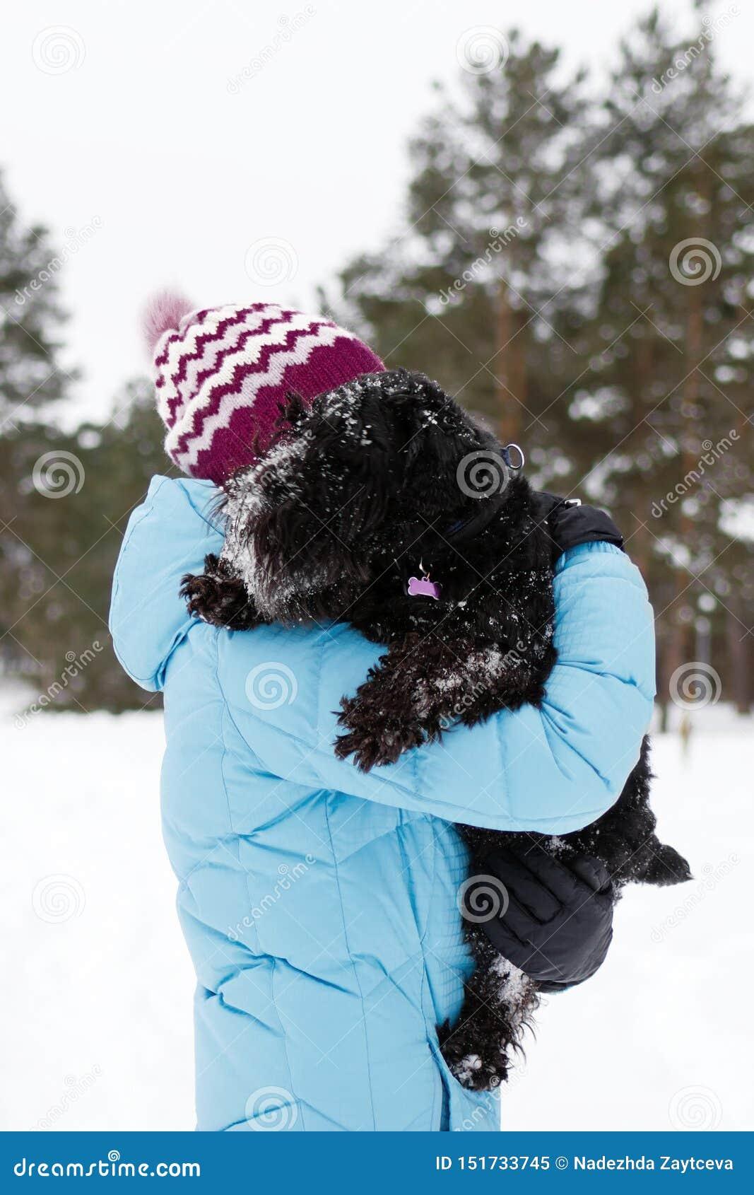 Den unga kvinnan rymmer hennes djupfrysta svarta miniatyrschnauzer vid händer på en bakgrund av vinterbarrskogen