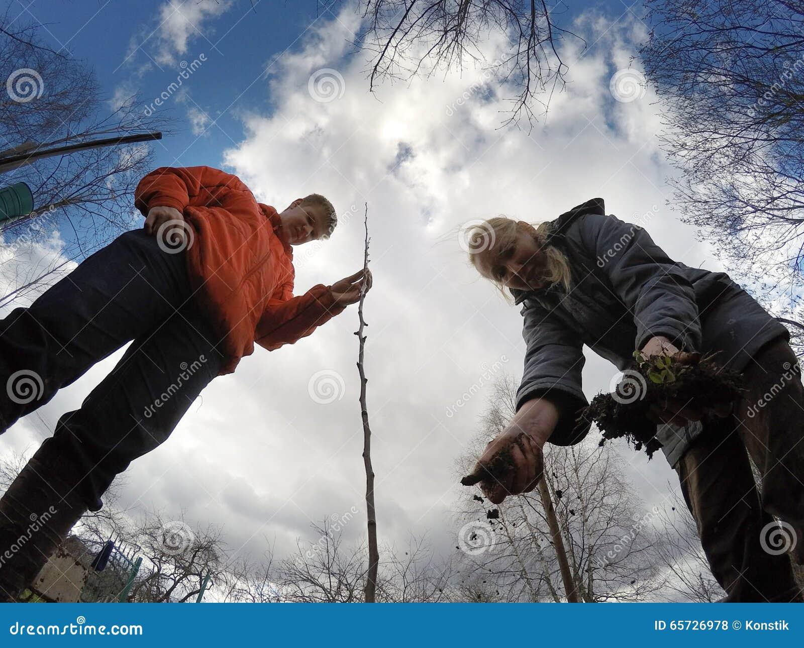 Den unga mannen och kvinnan planterar ett fruktträdungt träd