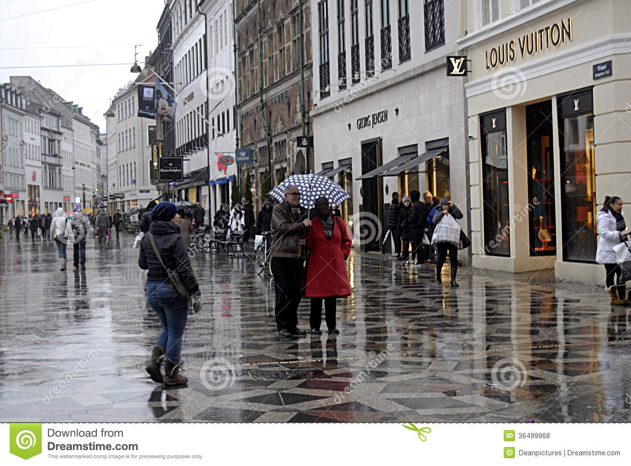 DENMARK_TRAVELERS IN SHOPPER IN RAINY WEATHER Editorial Stock Photo - Image: 36499968
