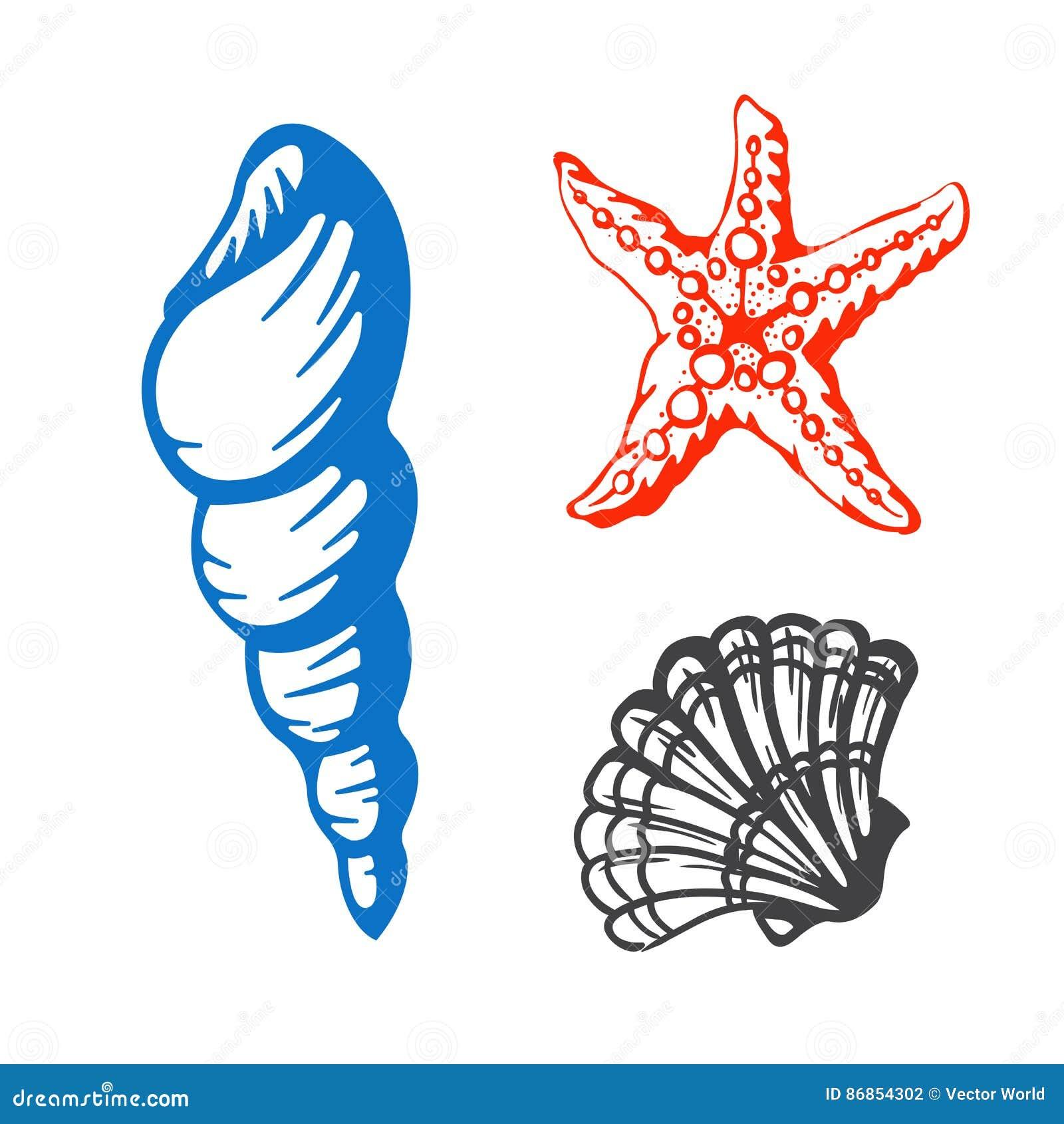 Denna morska ręka rysująca skorupy nakreślenia wektoru ilustracja