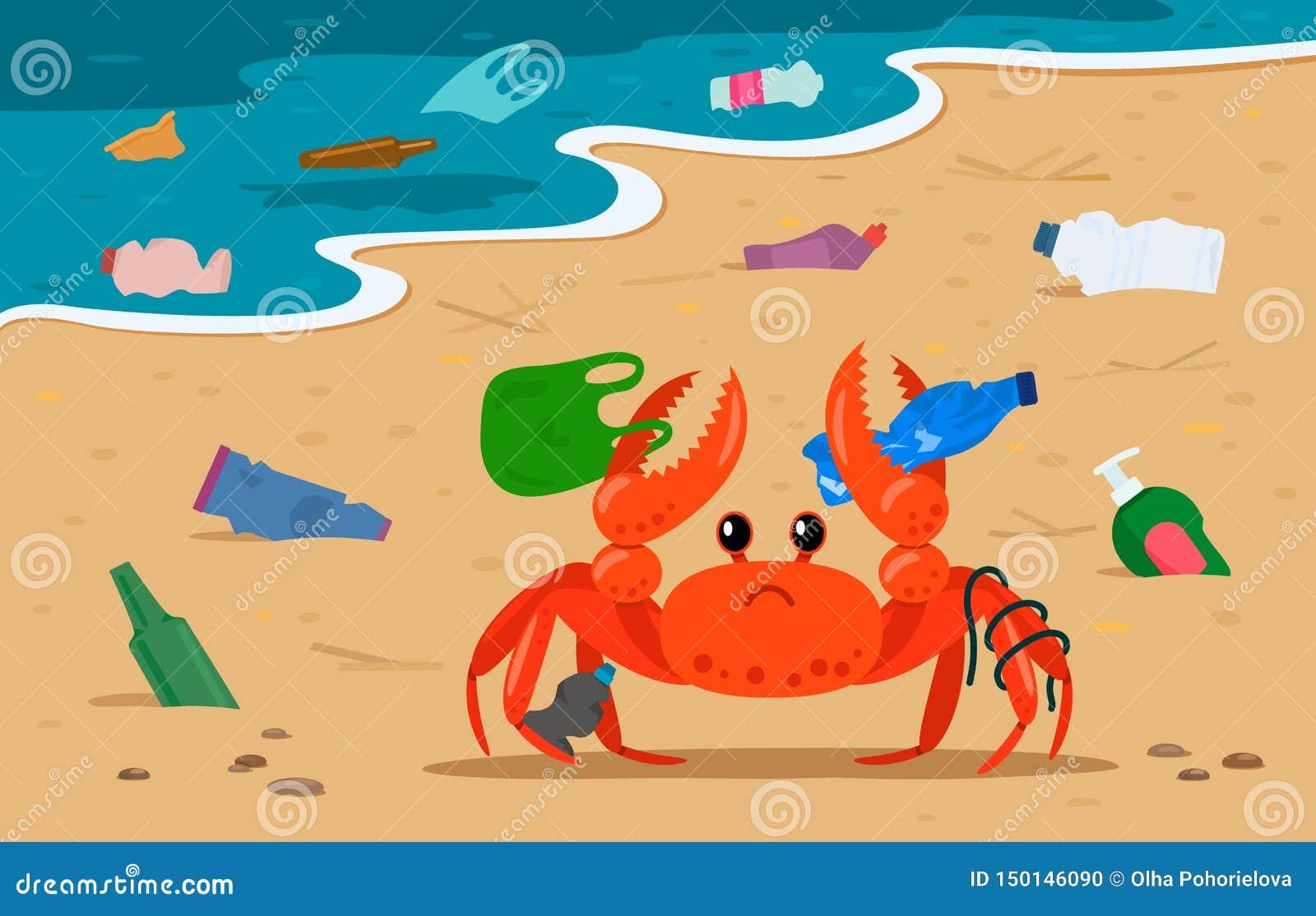 Denny krab plątający w klingerycie na tle wysypiska i torby na śmiecie na plaży zanieczyszczający wybrzeże odchody ludzcy gacenie