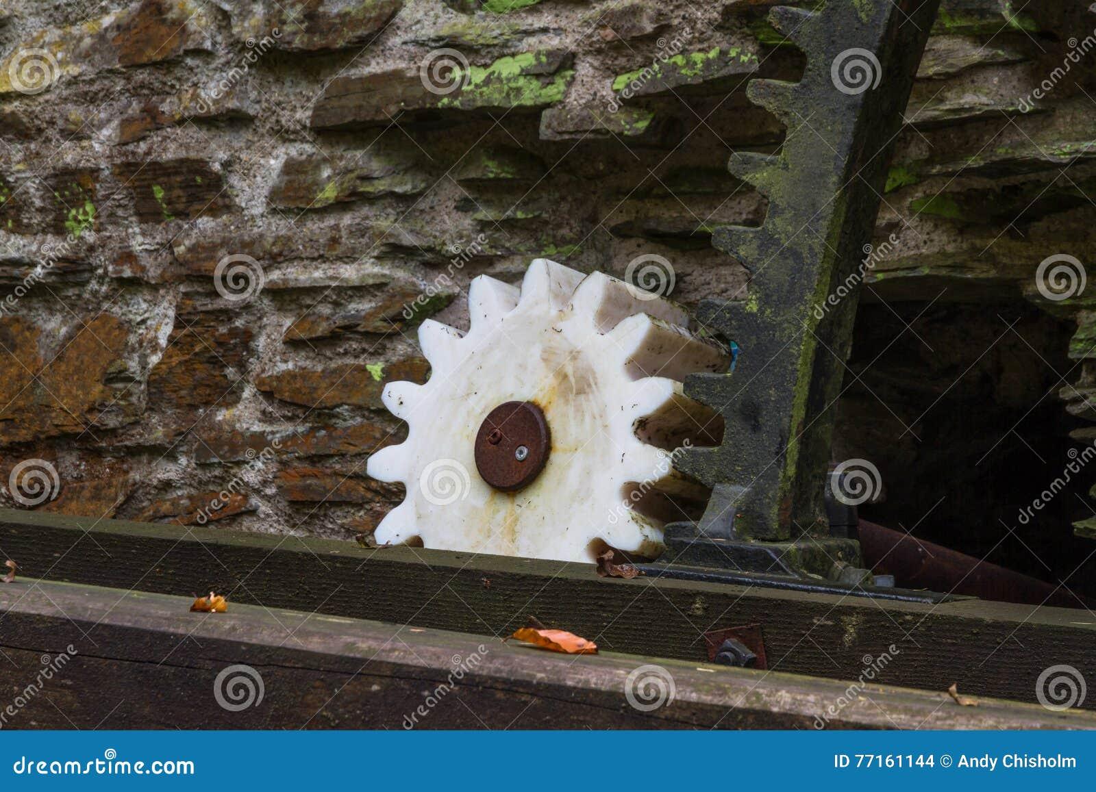 Dent conduite par la vieille roue hydraulique