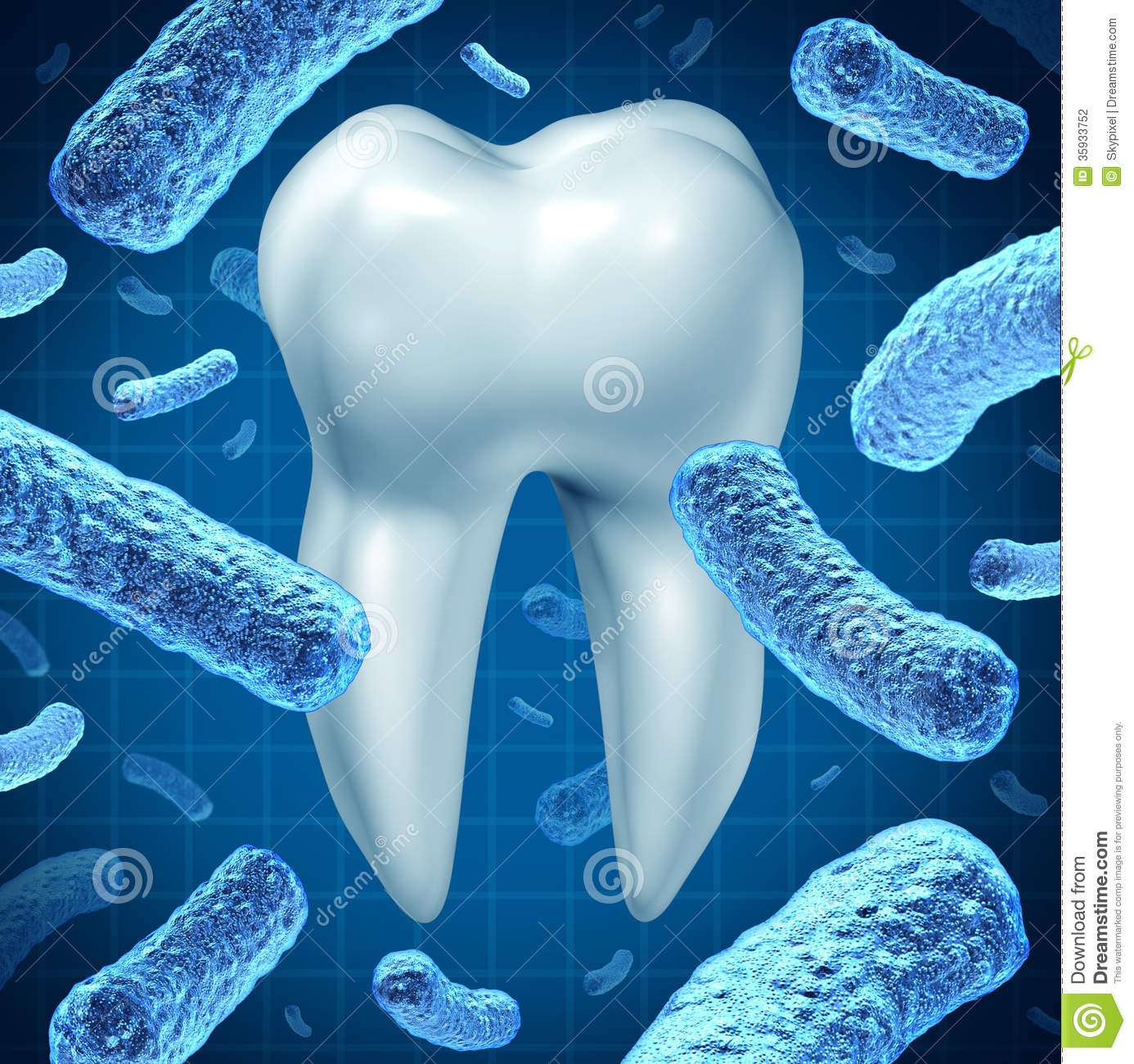 Dental Hygiene Stock Illustration Image Of Root Bacteria