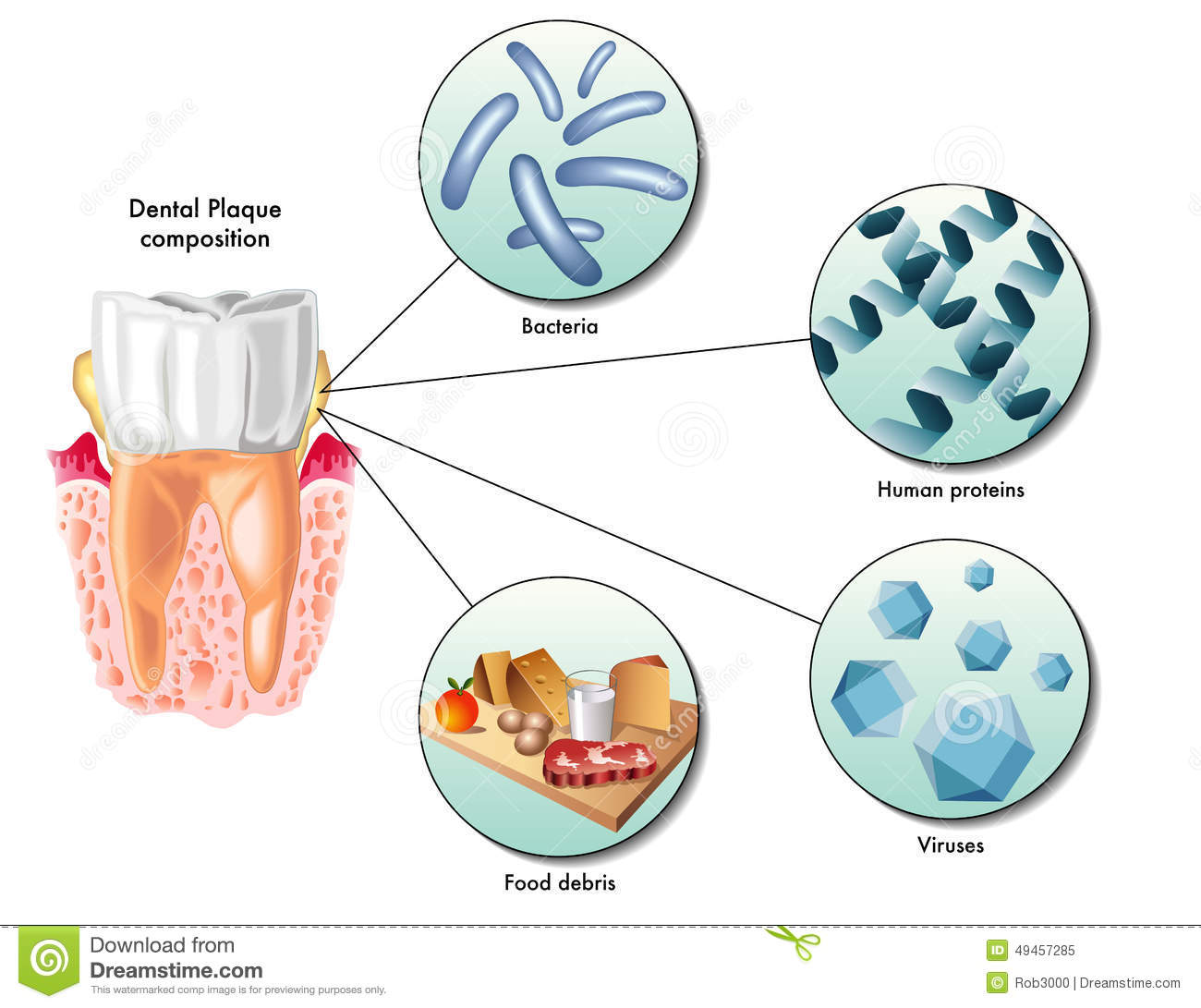 Natural Treatment For Biofilm