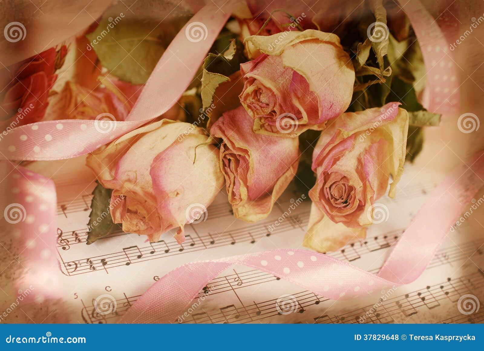 Dentelez les roses sèches sur le vieux papier de note dans le style de vintage