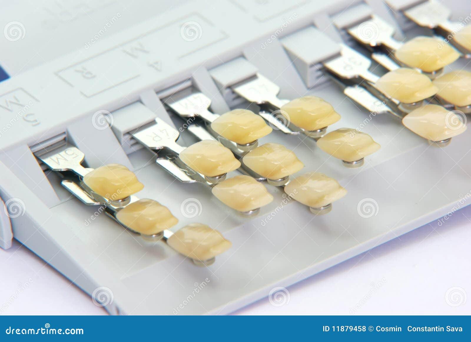 Denti della porcellana - tasti di colore
