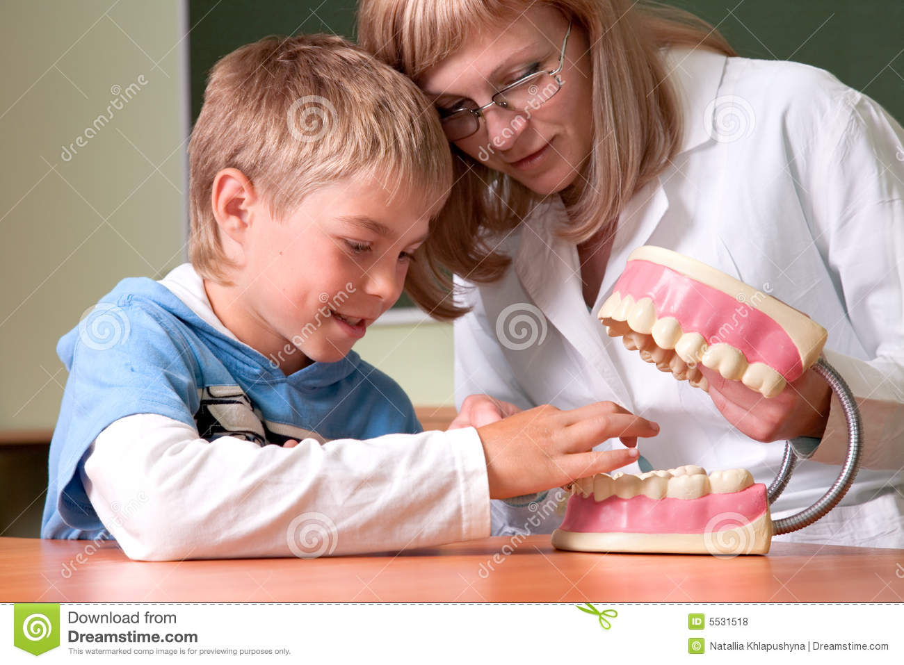 Dentist with jaw of dentist s sample teeth