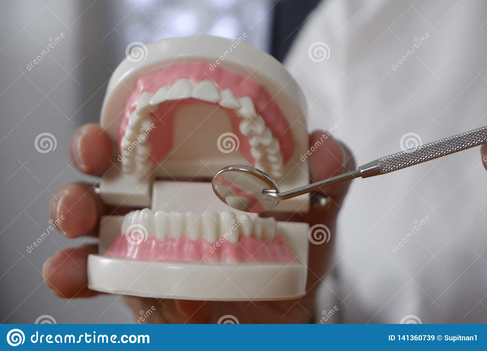 Dentist using tools on teeth model in dental office/ professional dental clinic, dental and medical concept