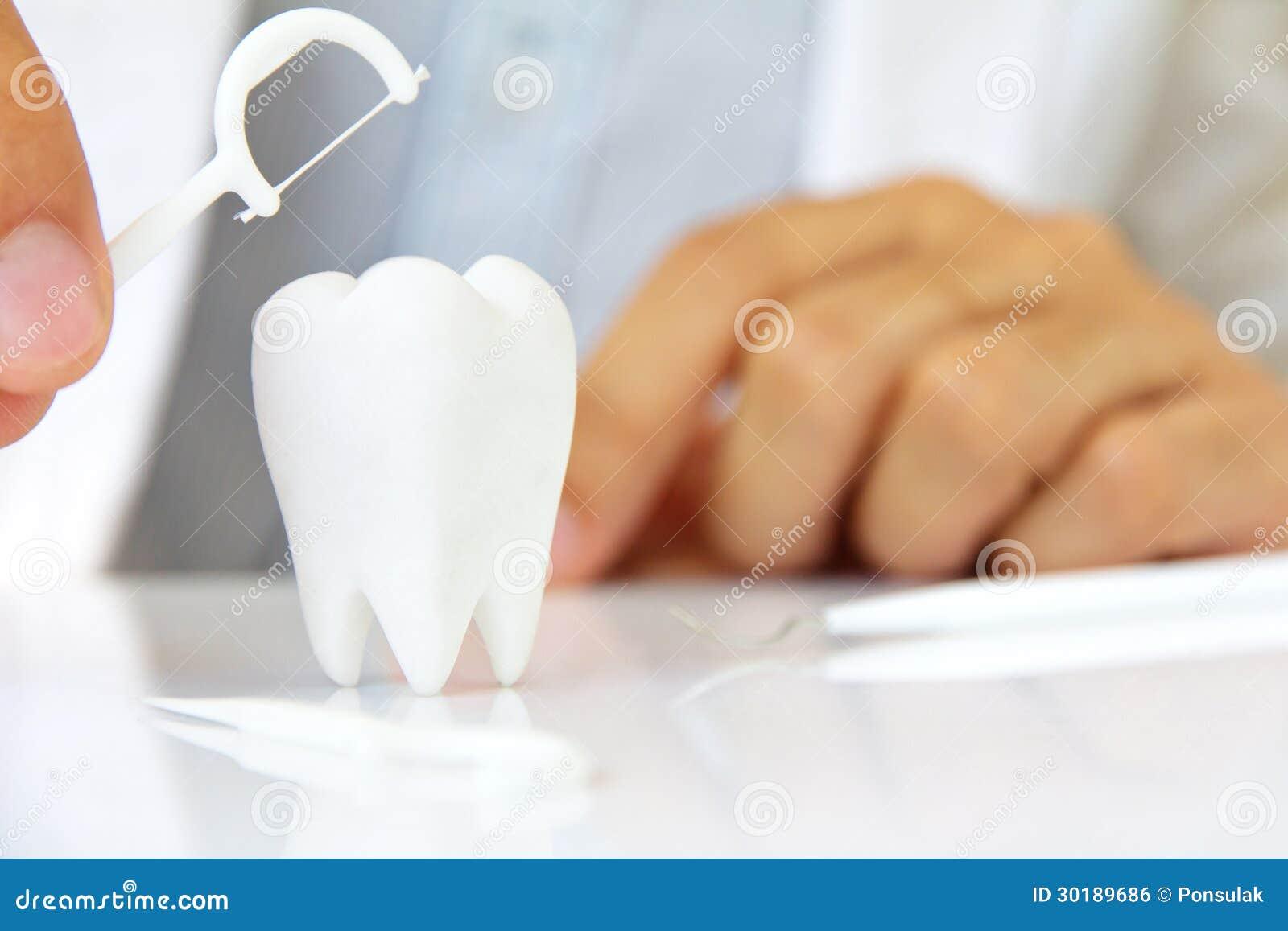 Dentista que sostiene la seda dental con la muela
