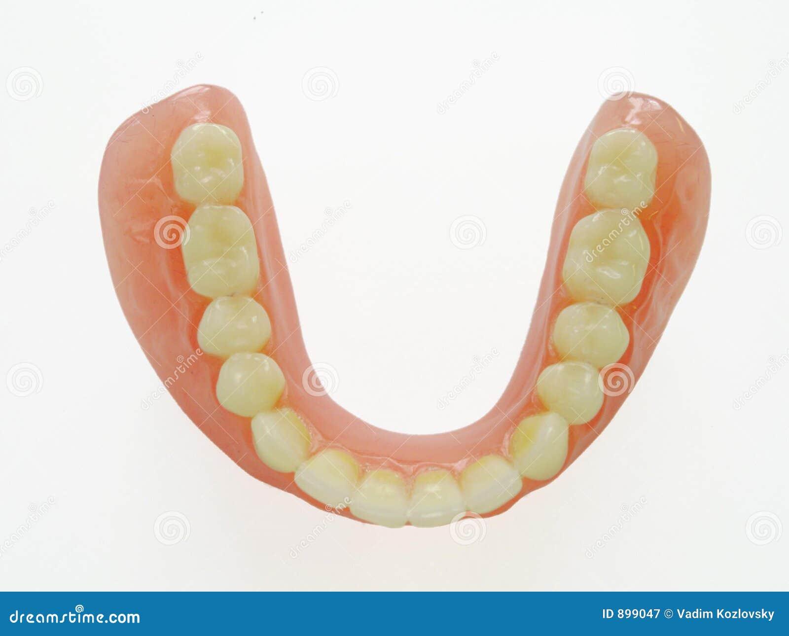 Denture kończyna