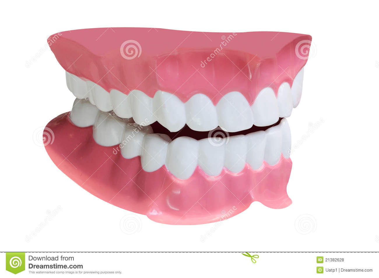 Dentures Royalty Free Stock Photos - Image: 21382628
