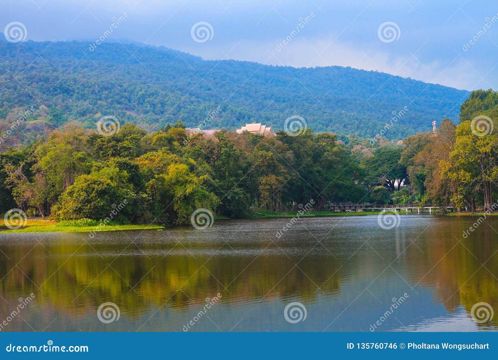 Depósito adyacente a bosques y a montañas
