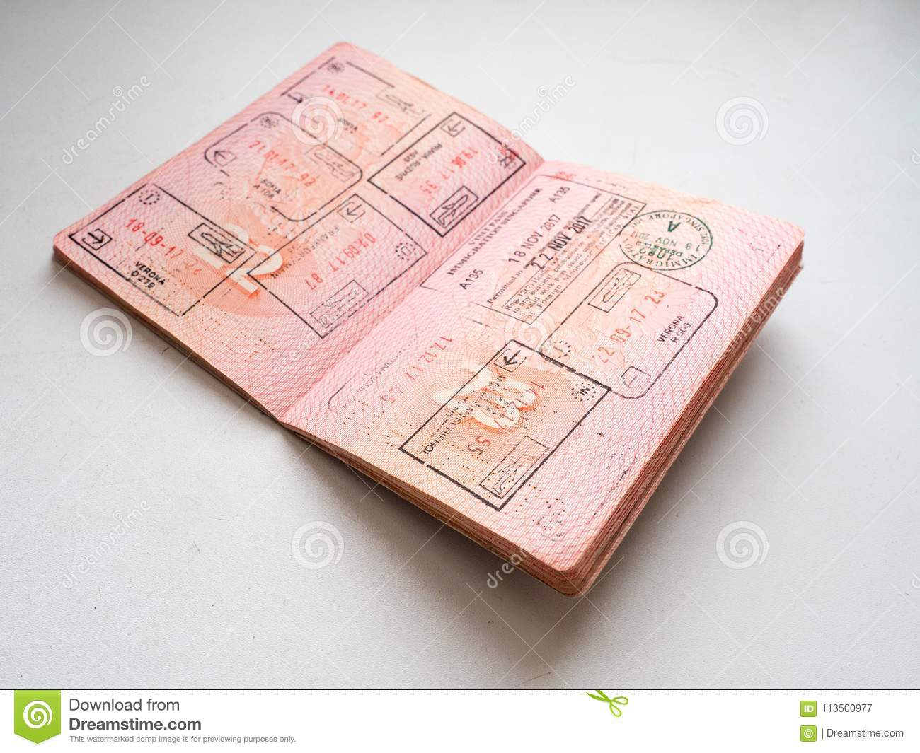 Departure And Arrival Immigration Stamps In Russian Passport