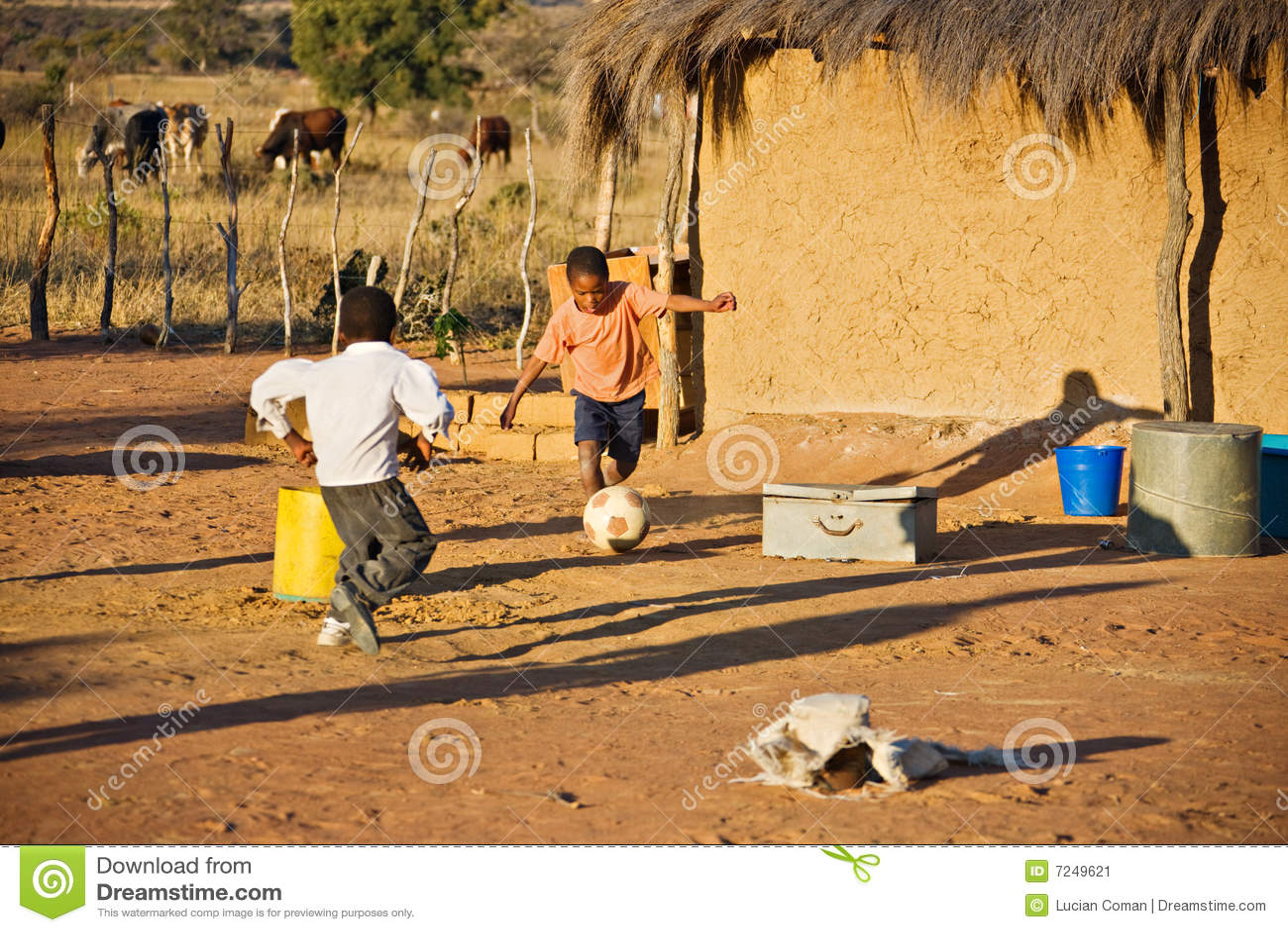 Deporte africano
