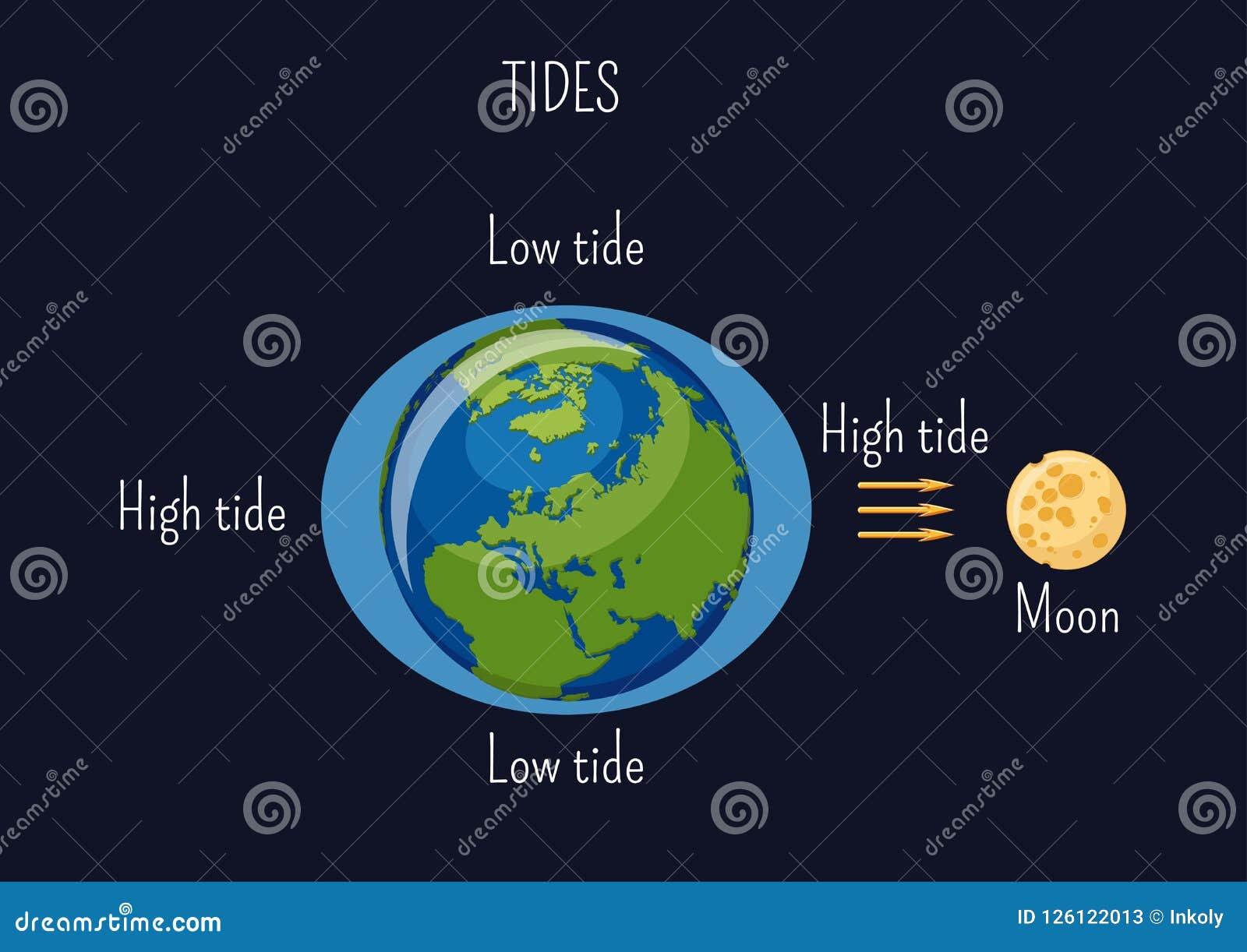 Depresja i wysoki księżycowy przypływu diagram Skutek księżyc grawitacyjna siła na seacoast poziomie wody