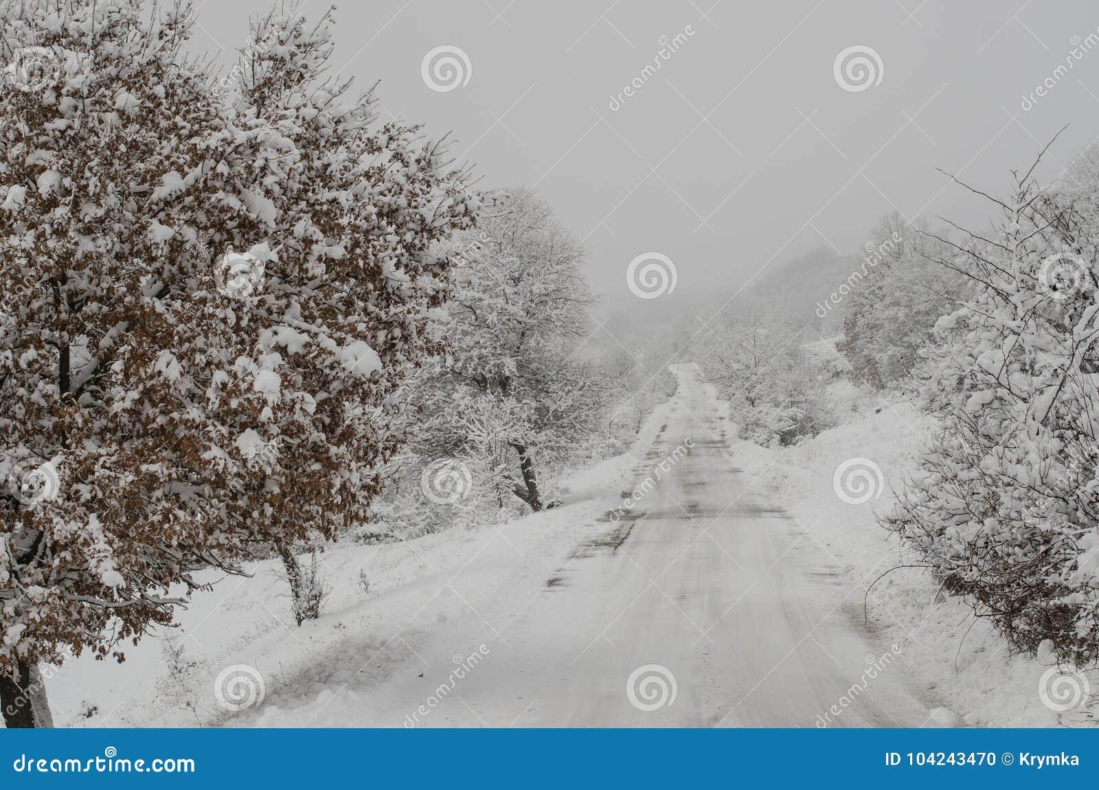Depressione del percorso di Snowy il legno