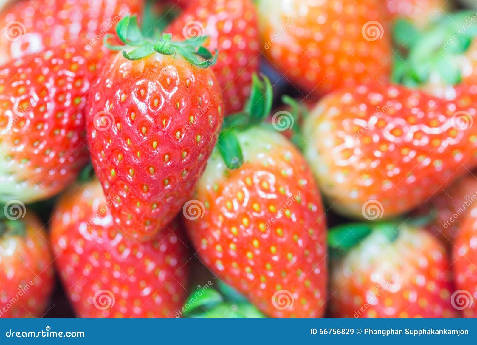 Der Abschluss oben der Gruppe der frischen roten Erdbeere