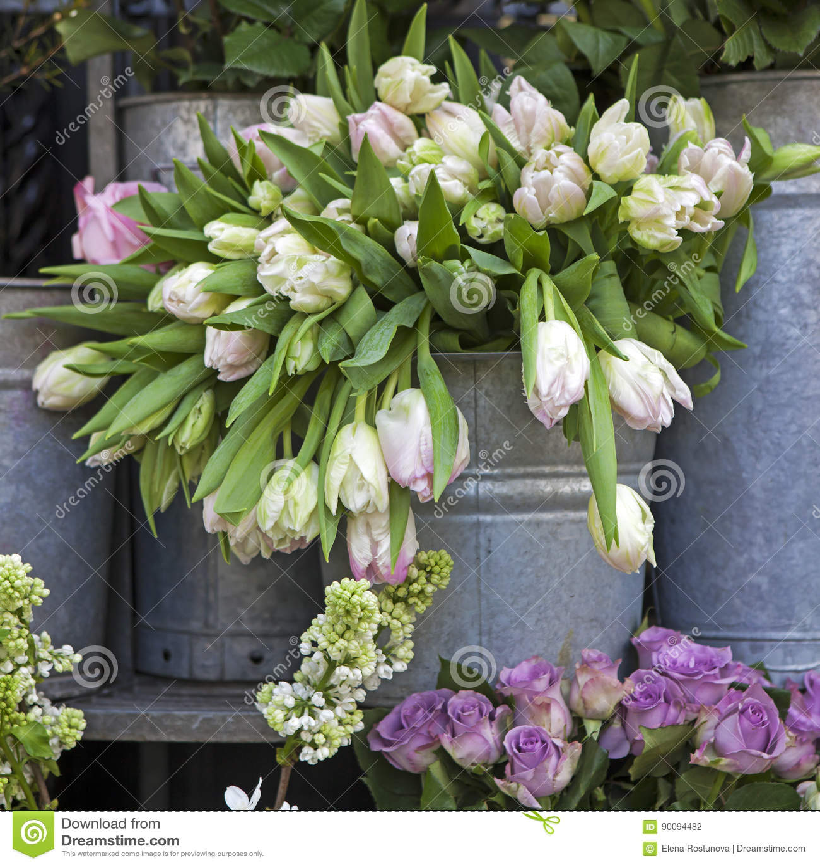 Der Eimer Mit Einem Blumenstrauß Von Weißen Tulpen Und Von Vase Mit ...