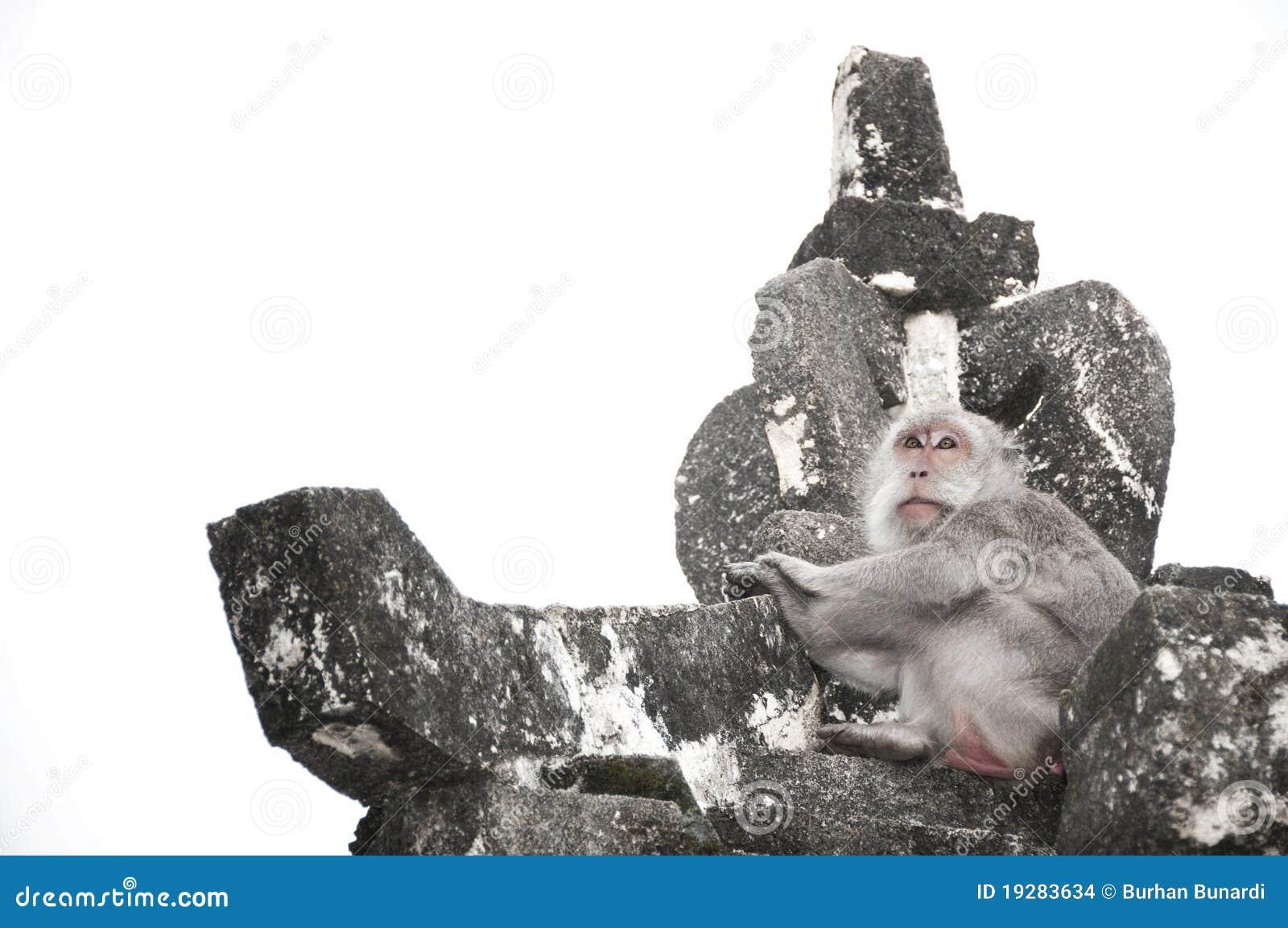 Der Fallhammer nach Uluwatu Tempel