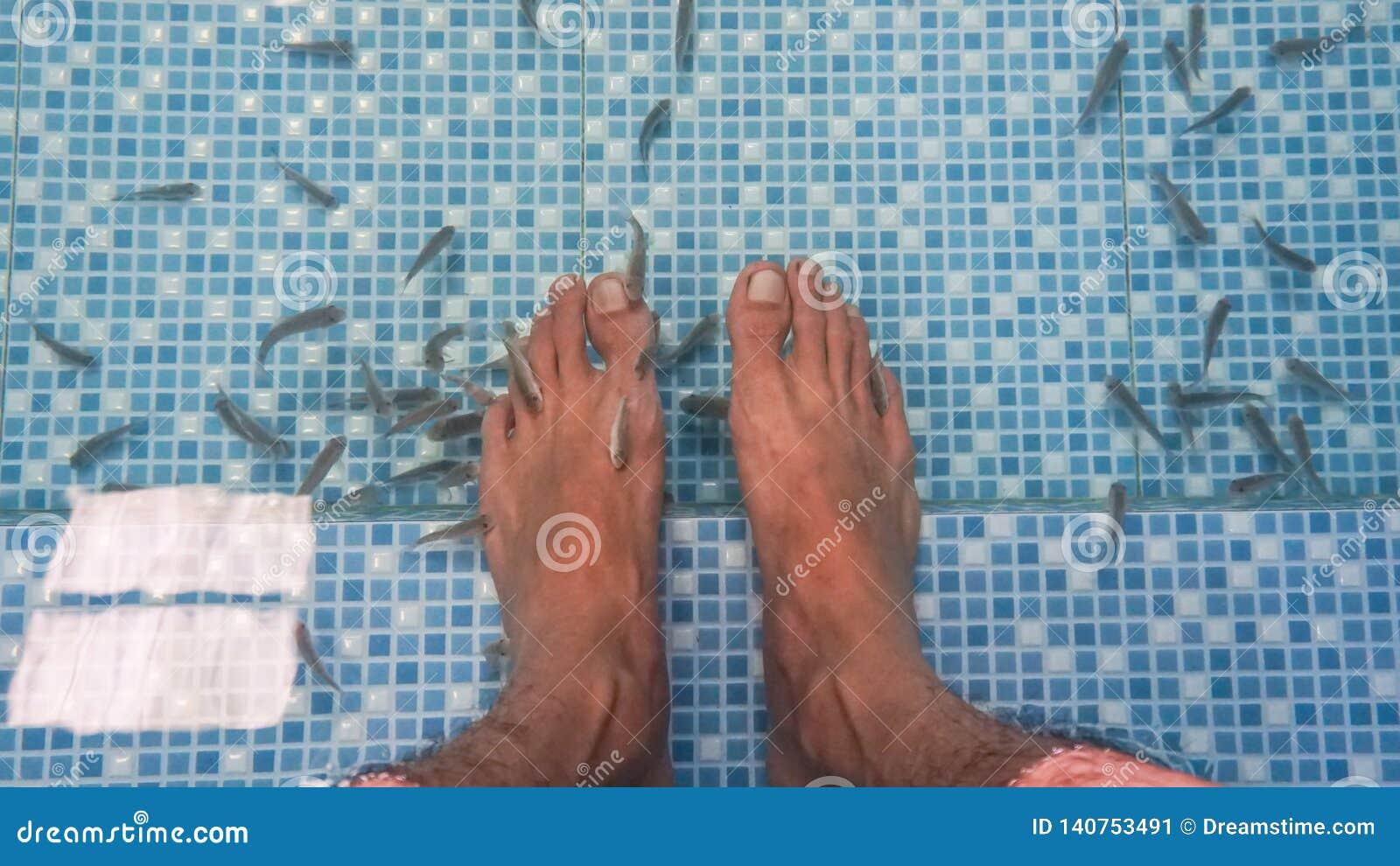 Der Fischbadekurort Füße innerhalb des Wassers