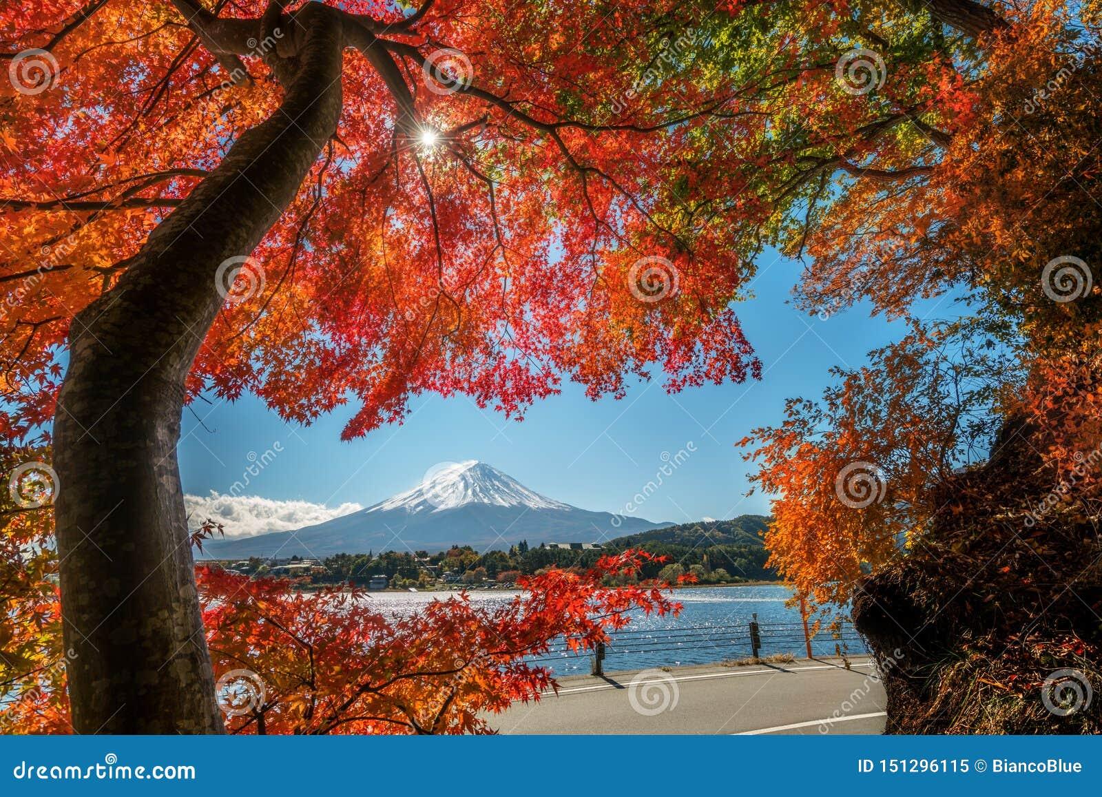 Der Fujisan in Autumn Color, Japan