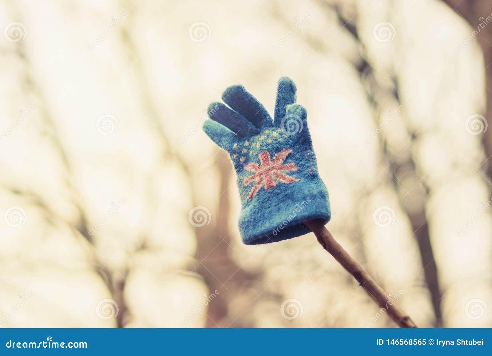 Der Handschuh des Kindes, der an einem Baum hängt