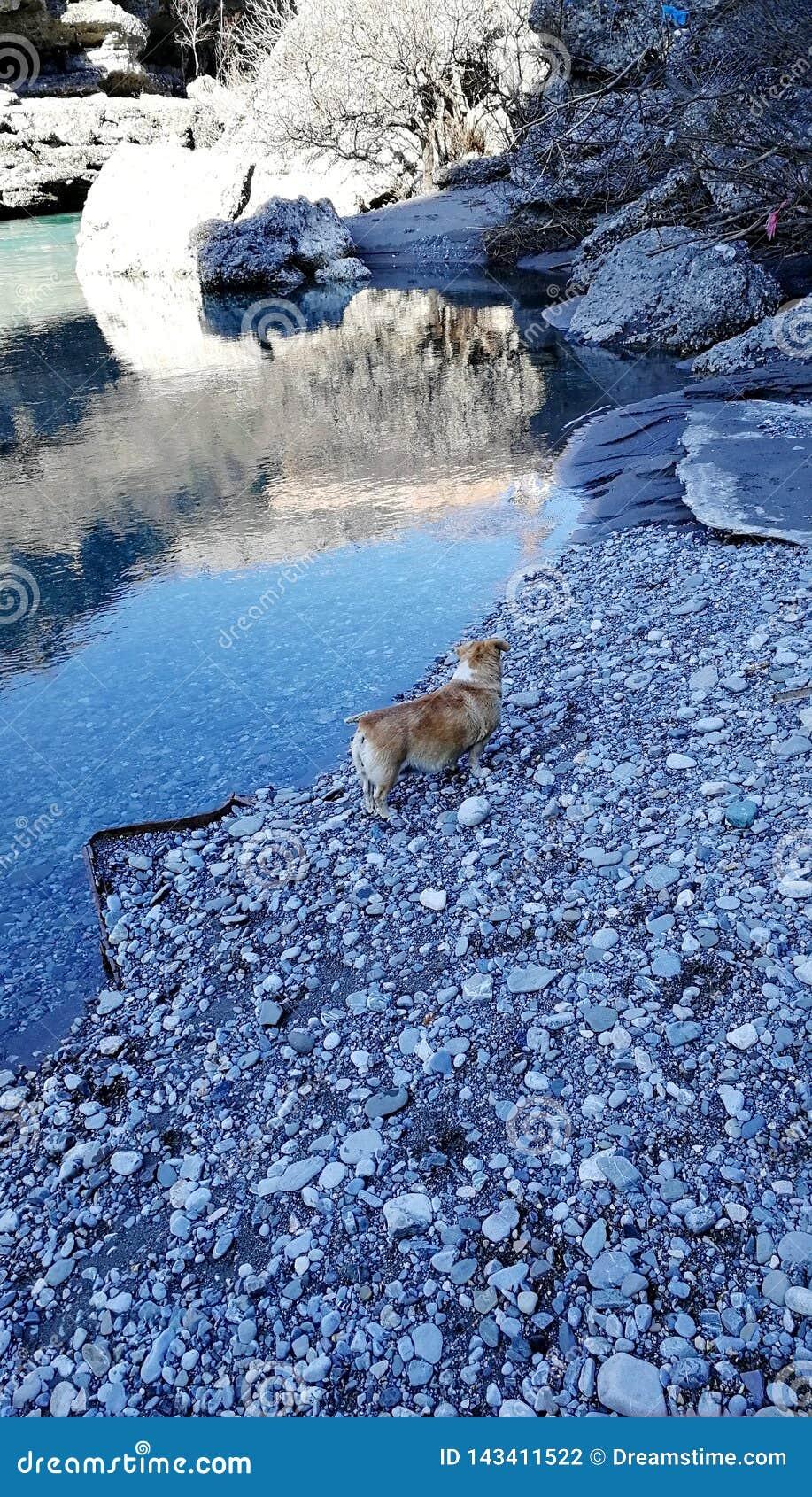 Der klare Wasserfluß