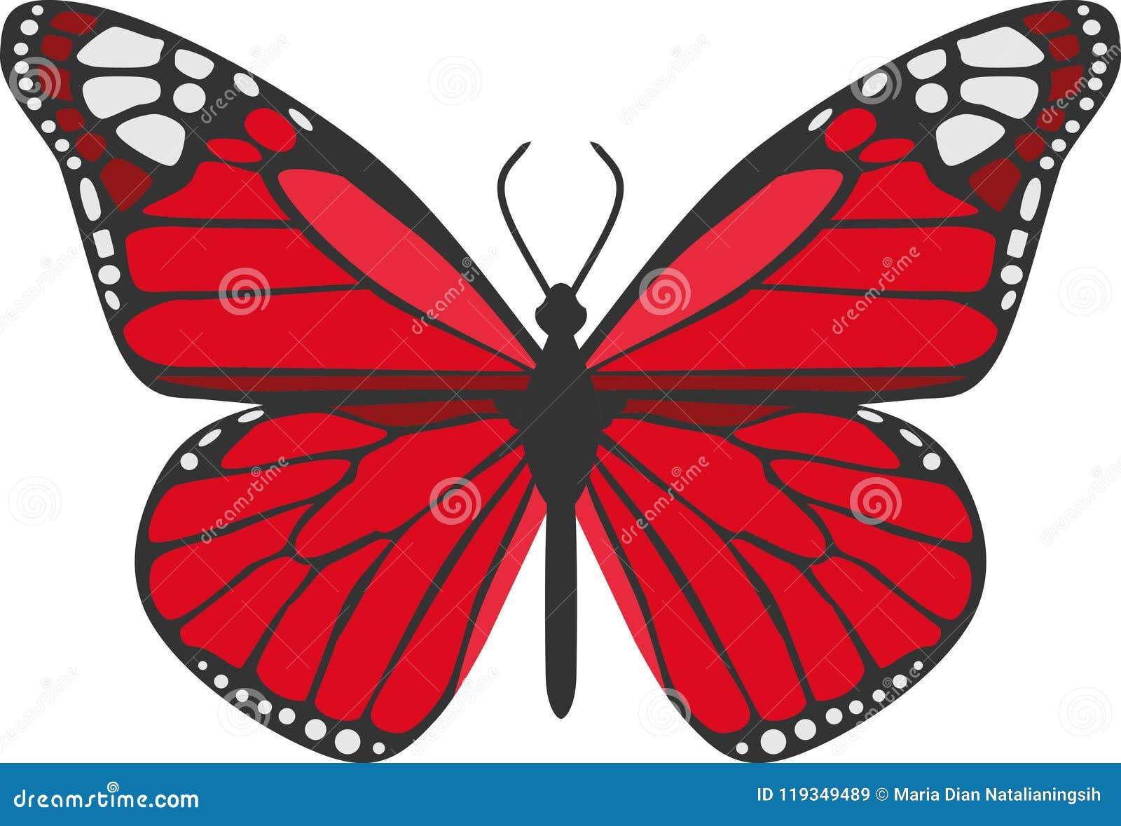 der rote schmetterling stock abbildung illustration von