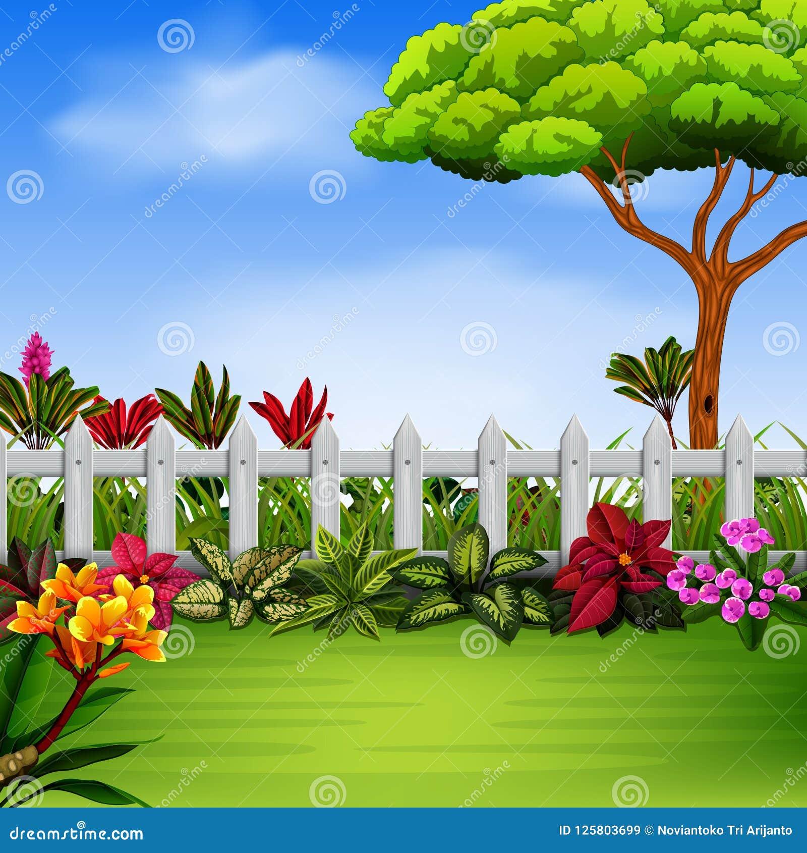 Der Schöne Garten Mit Dem Fance Und Den Blumen Vektor Abbildung