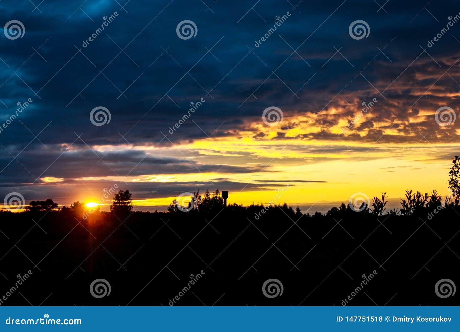 Der Sonnenuntergang im dunklen Wald