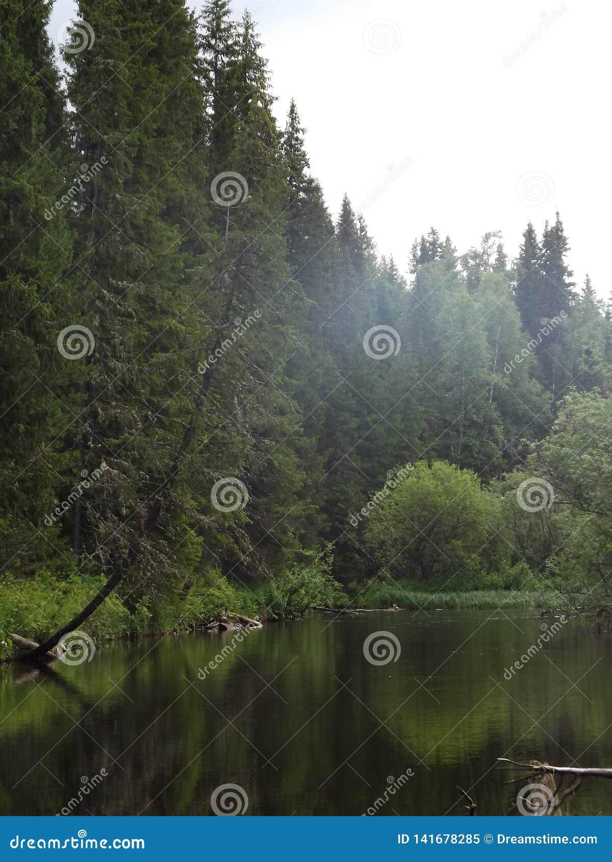 Der Uls-Fluss im Dauerwelle-Gebiet