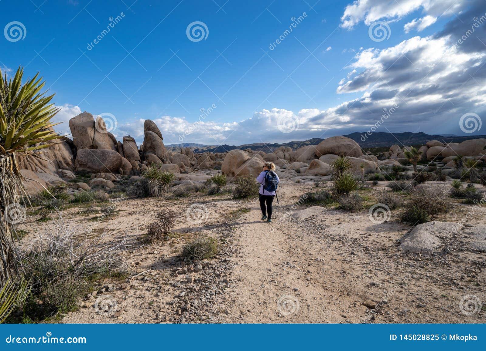 Der weibliche Wanderer der jungen Frau, der einen Rucksack tr?gt, l?uft auf einem Wanderweg in Joshua Tree National Park, zum Bog