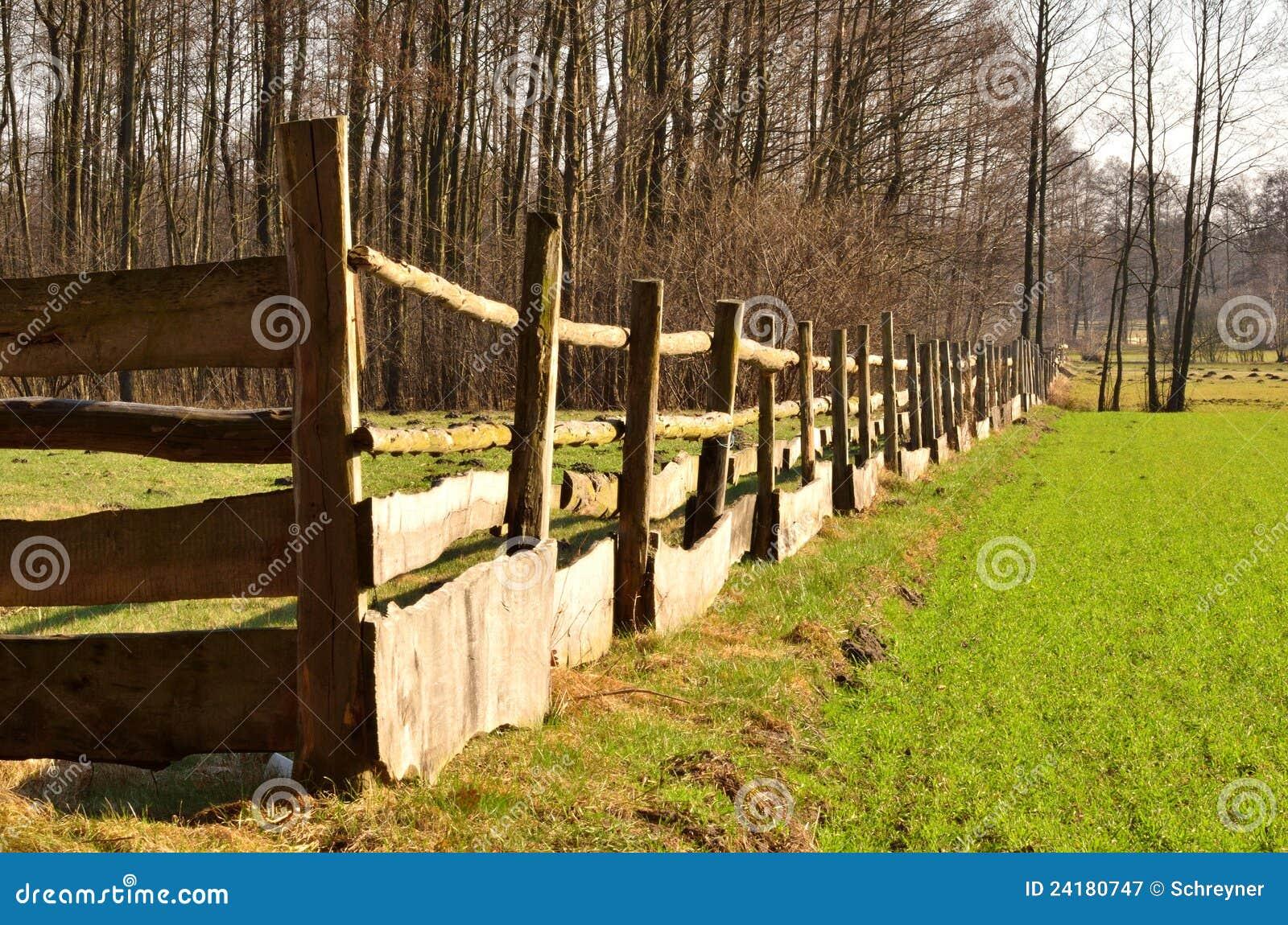 Der Zaun um Weide stockbild Bild von grün pfützen