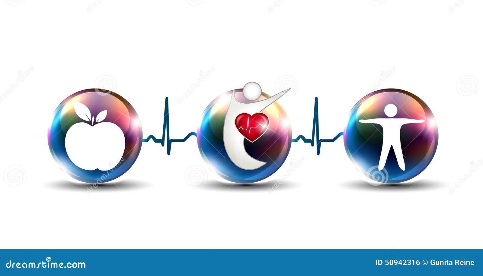Derruba como reforçar o sistema cardiovascular