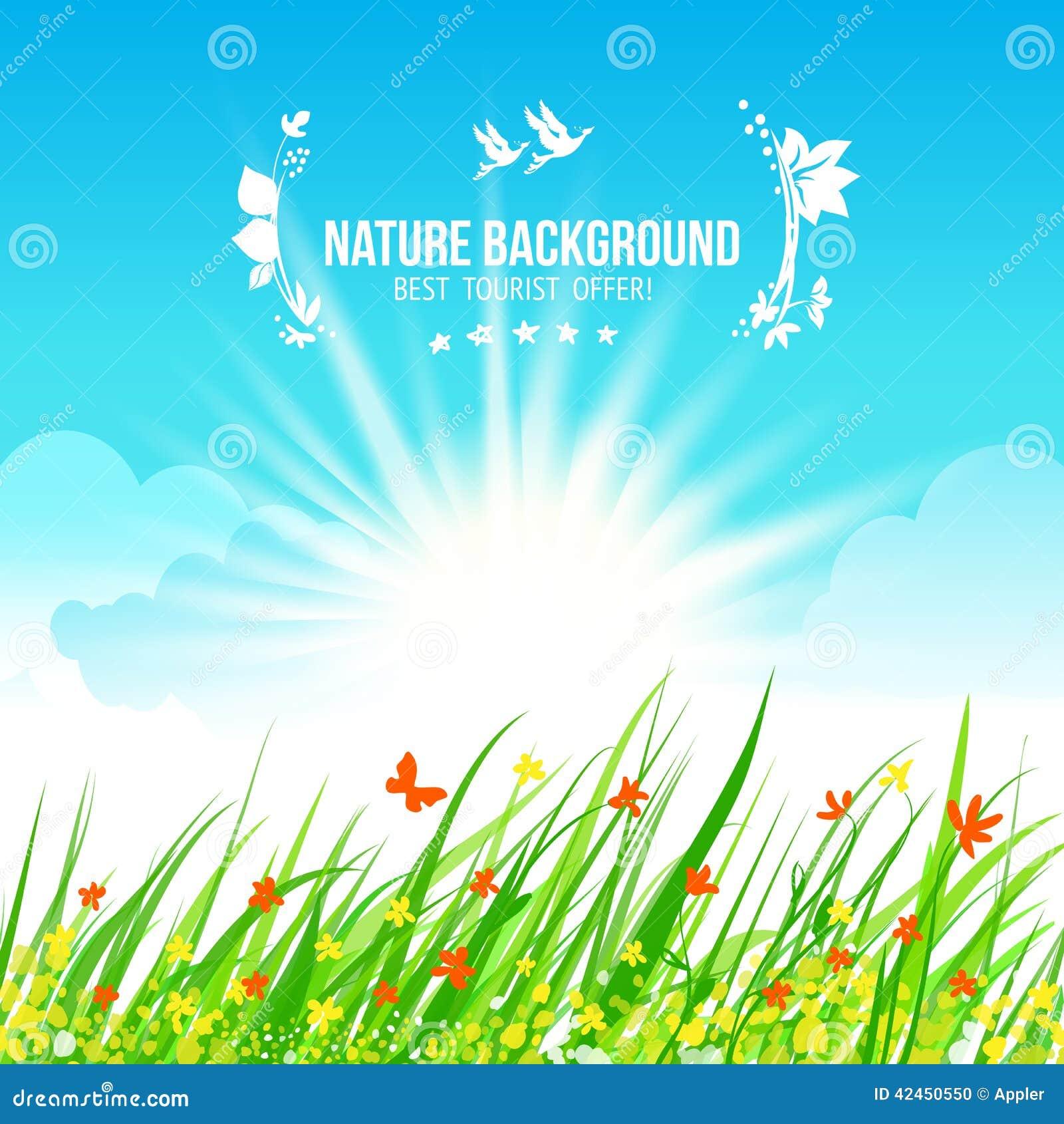 Des Grases, Blauen und Grünen Hintergrund des Himmels und