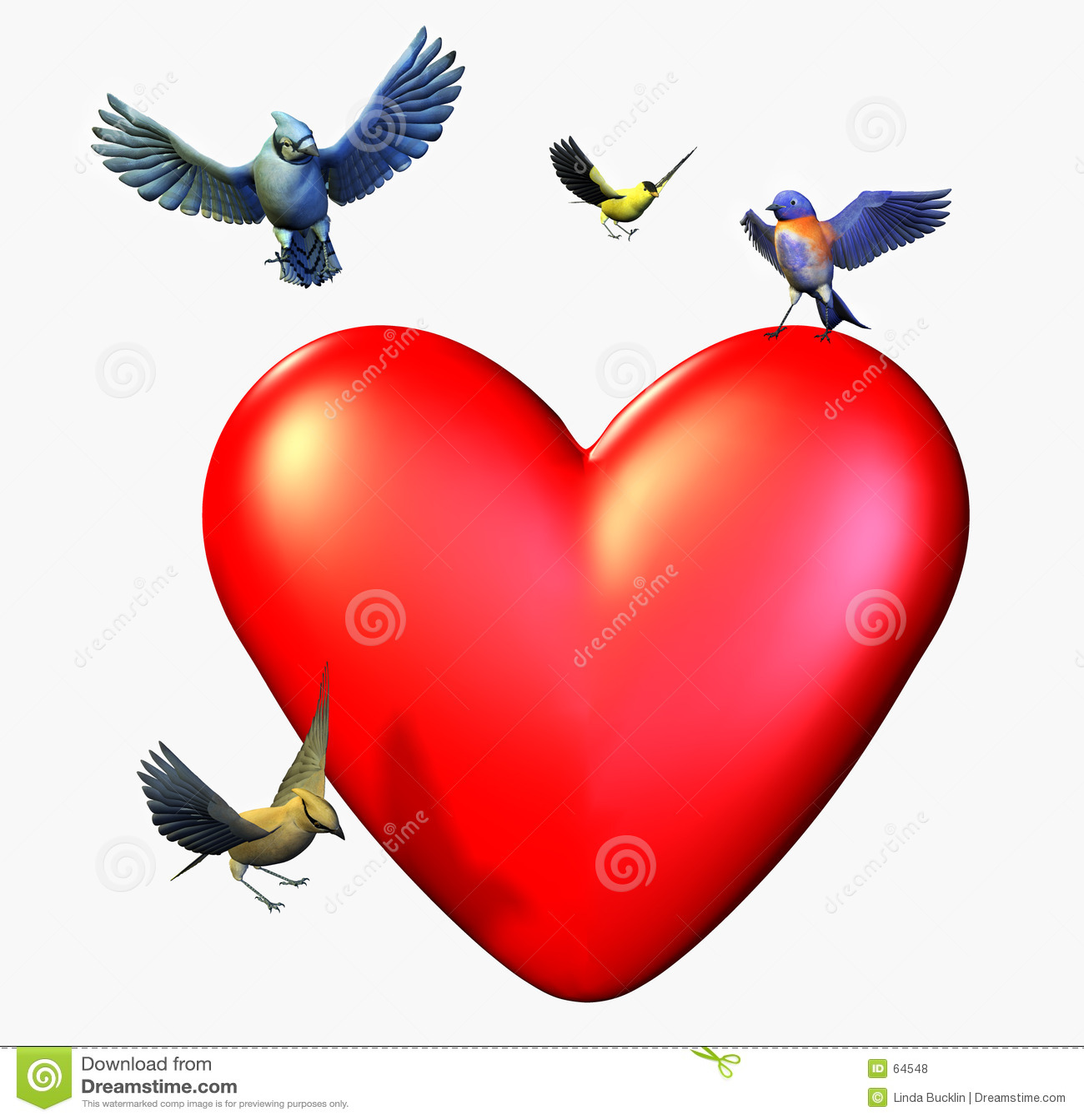 Download Des Oiseaux Atterrissant Sur Un Coeur - Comprend Le Chemin De Découpage Illustration Stock - Illustration du vacances, bluebird: 64548