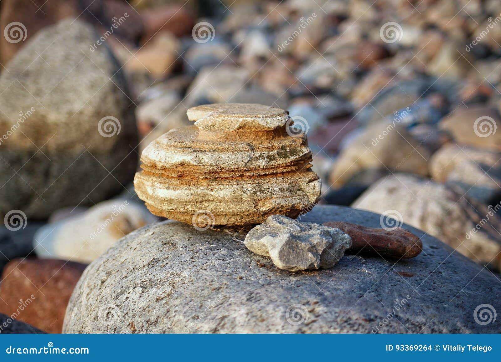 Des Steins Leben noch