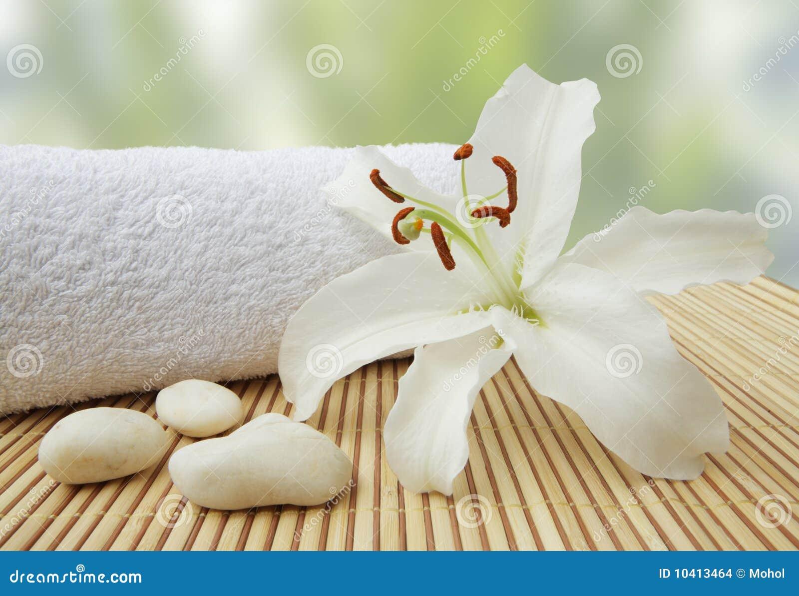 Des Wellness Lebenkiesel noch und weiße Lilie
