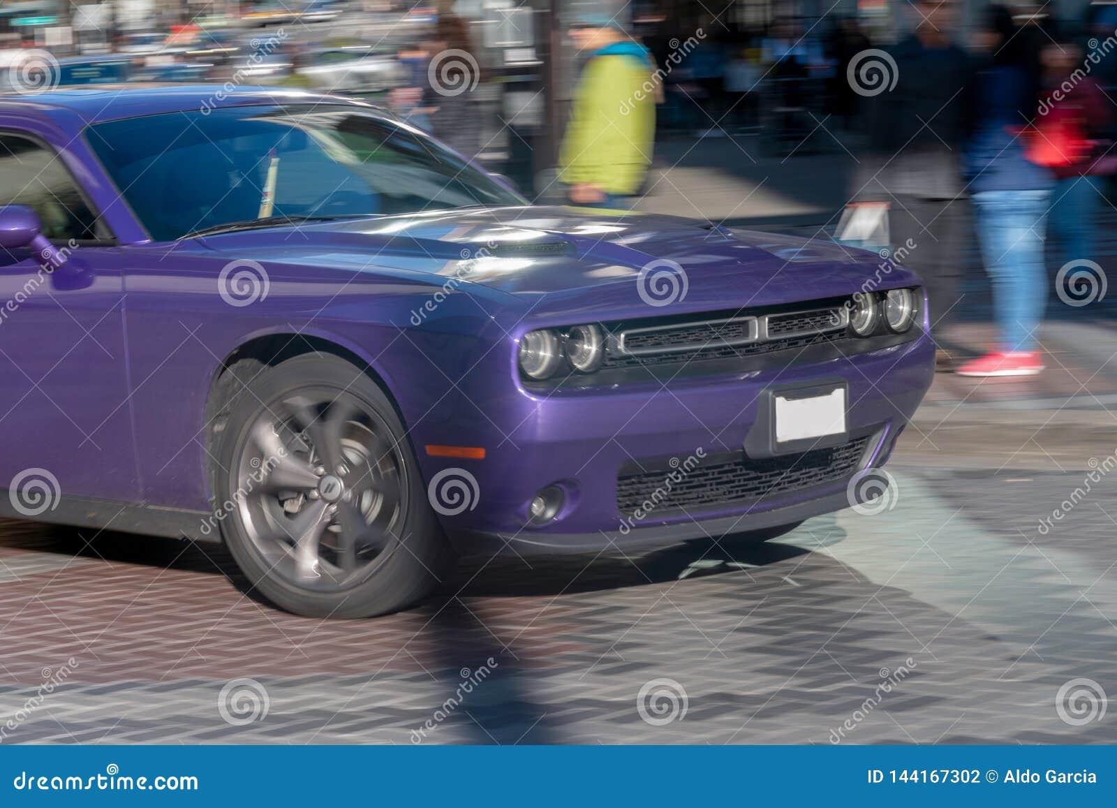 Desafiador púrpura en el movimiento