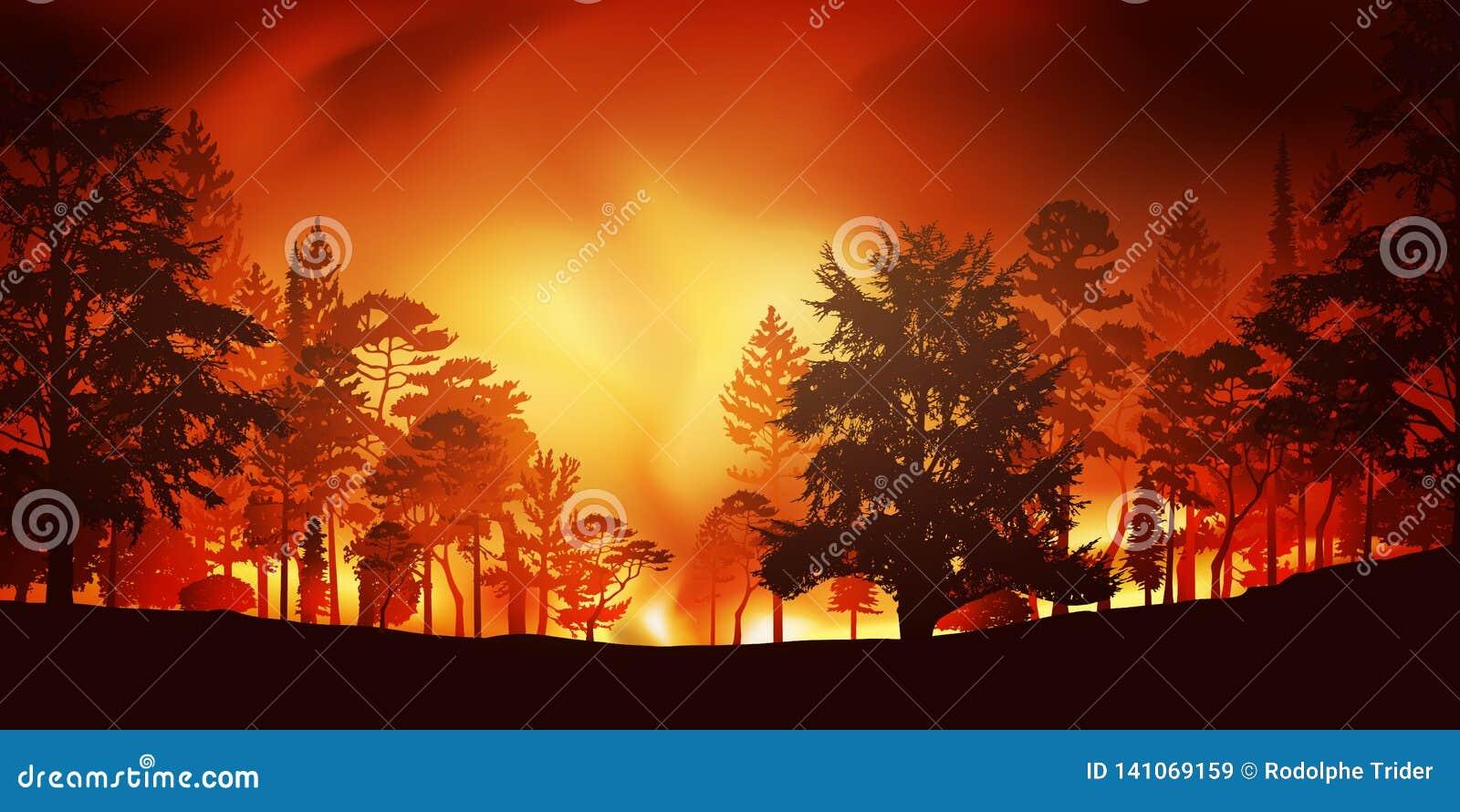 Desastre ecológico con un incendio forestal