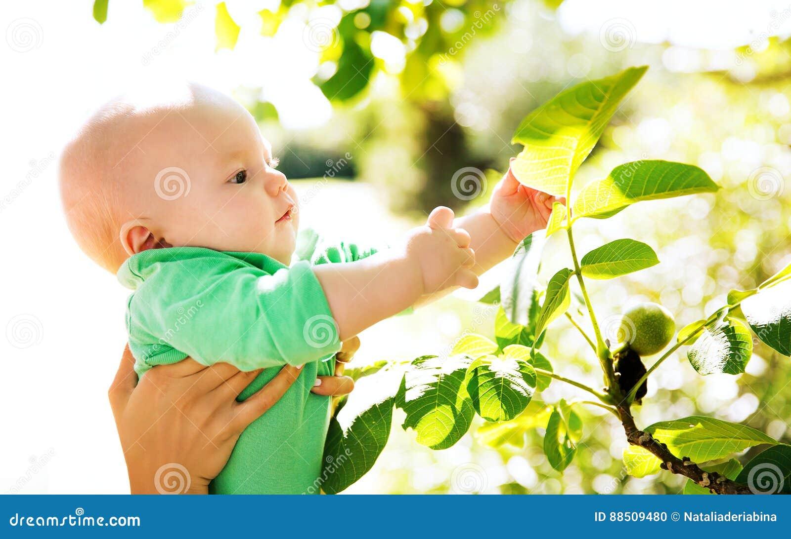 Descoberta da natureza pelo bebê