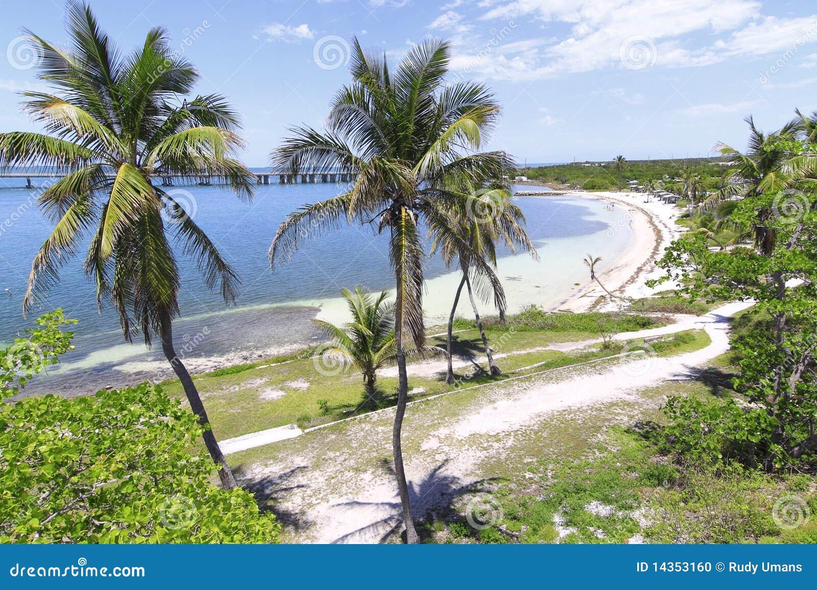 Descripción del clave de Bahía Honda - 4