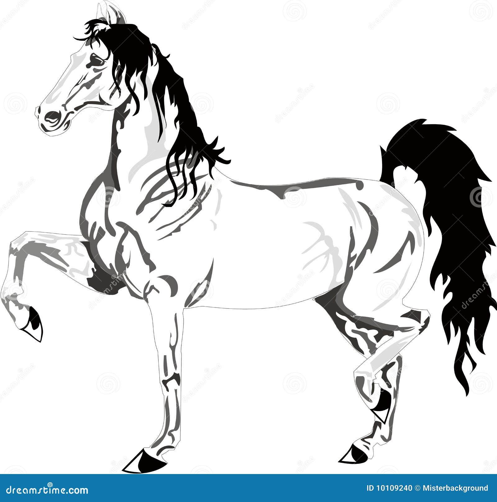 desenho bonito do cavalo preto e branco ilustração do vetor