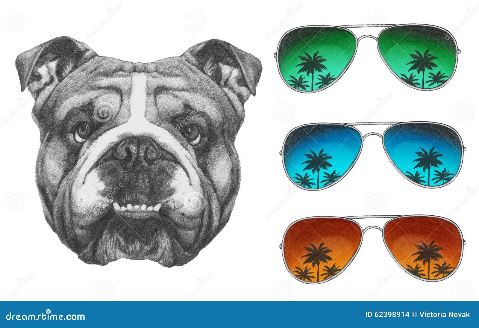8a7a91234d69c Desenho Original Do Buldogue Inglês Com óculos De Sol Do Espelho ...