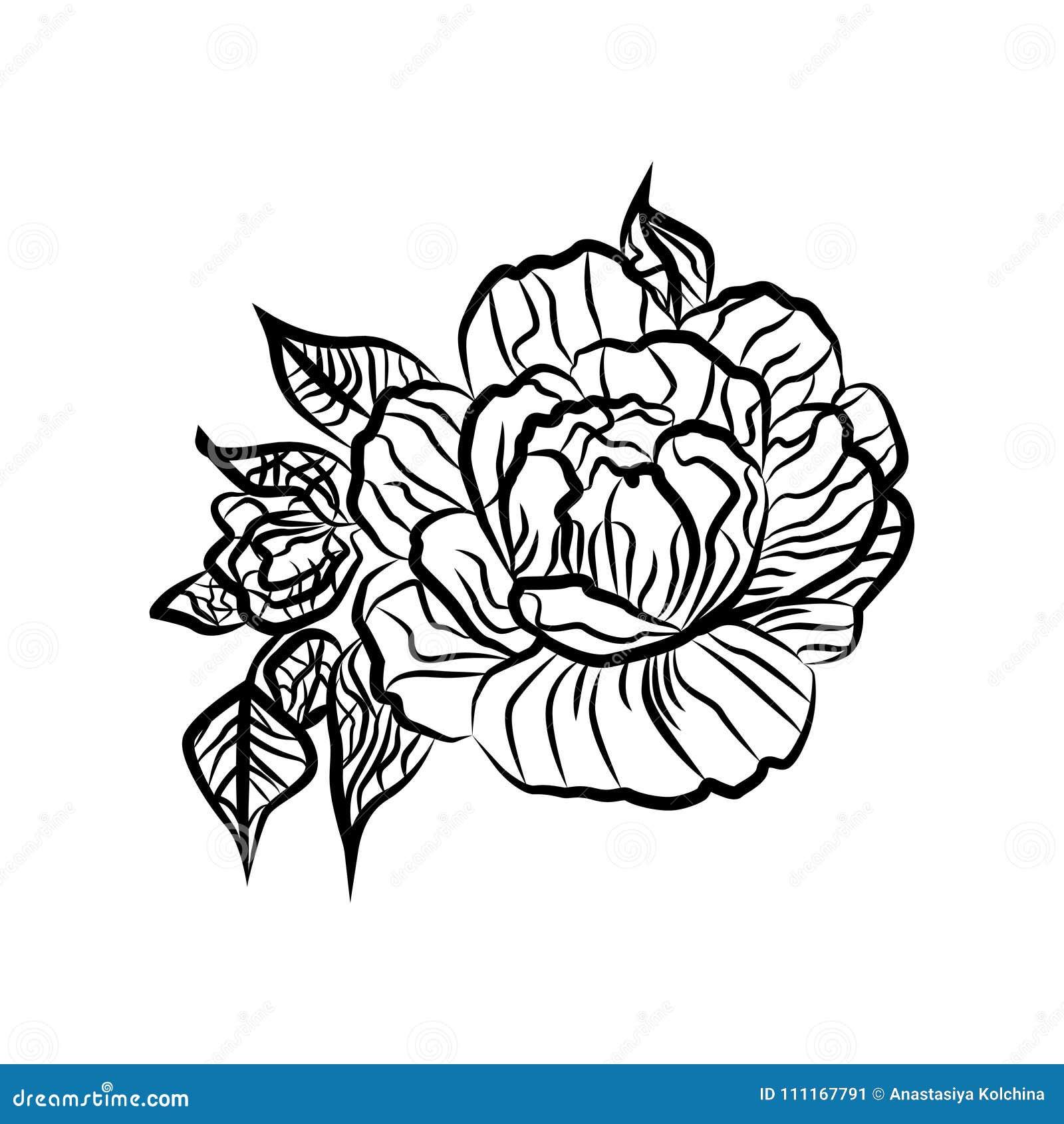 Desenho Preto E Branco De Uma Tatuagem Da Rosa Silhueta Do